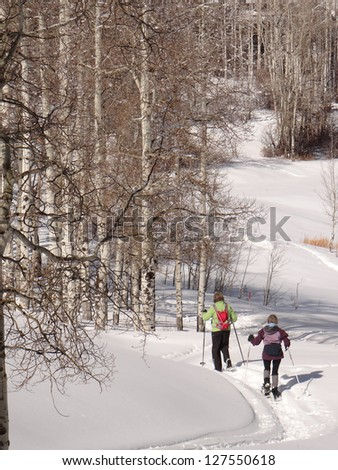 Two women snowshoe in a mixed conifer and aspen forest  on a cold winter day,   Colorado - stock photo