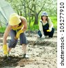 Two women sows seeds in soil at field - stock photo