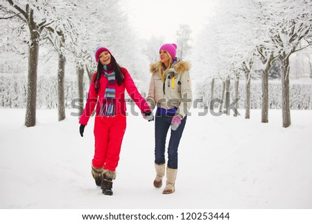 two women walk by winter alley snow trees on background - stock photo