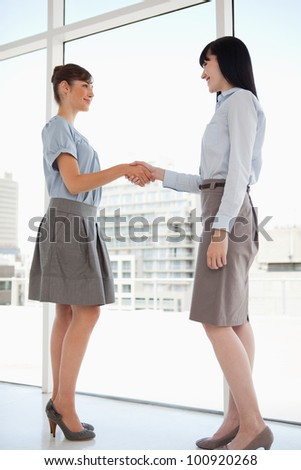 Two women with hands connected shake while smiling - stock photo