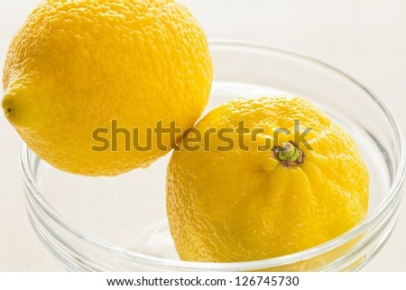 Two yellow lemons in a glass cup on a white background - stock photo