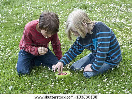 Two young boys on a meadow eating strawberries with milk from a bowl - stock photo