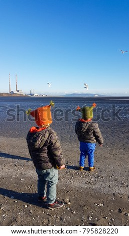 Two young boys standing on the beach in Dublin looking at the sea and the birds