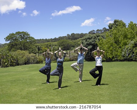 Two young couples performing yoga on a lawn - stock photo