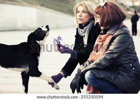 Two young fashion women and a dog - stock photo