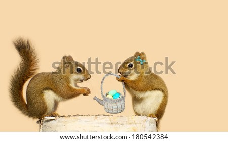 Two young squirrels in love, with the girl presenting an  Easter basket to the boy.  Part of a fun series. - stock photo