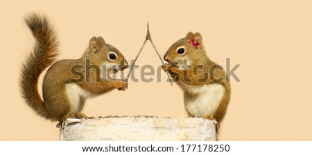 Two young squirrels on a log with a wishbone, making wishes. Part of a fun series.  - stock photo