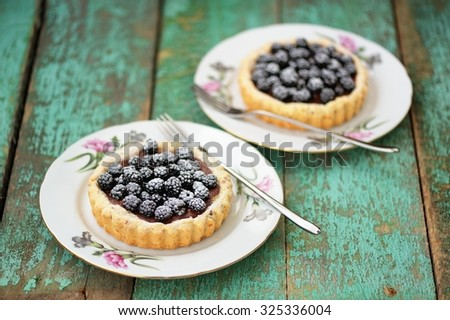 Two yummy homemade cakes with blackberries and icing sugar on old turquoise table - stock photo