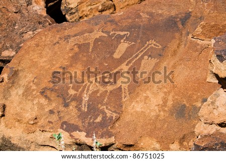 Twyfelfontein, Rock Engravings with Footprints and Giraffe