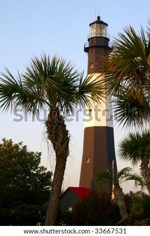 Tybee Island Lighthouse Through the Palm Trees, Near Savannah, GA Vertical - stock photo