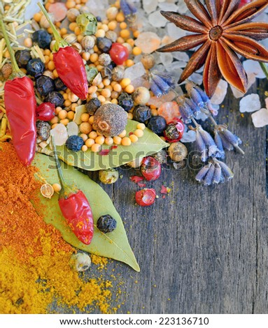 types of spices on old wooden table - stock photo