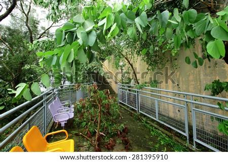 Typhoon damage - stock photo