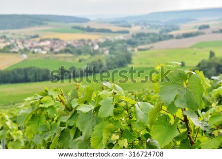 Typical agricultural landscape in Champagne-Ardenne, France