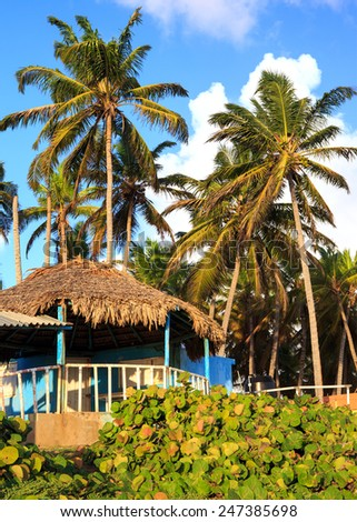 Typical blue house on seashore in Dominican Republic - stock photo