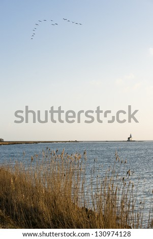 Typical country landscape in Marken The Netherlands (near Amsterdam) - stock photo