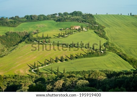 Typical curved road lined with cypress trees in Tuscany, Italy - stock photo