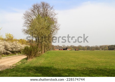 Typical Dutch farm and contryside scene with a grass meadow in the foreground in Brabant in the Netherlands - stock photo
