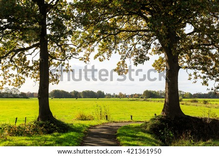 Typical dutch landscape of grassland with cows on a sunny day - stock photo