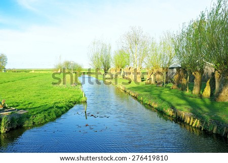 Typical dutch landscape with cropped willows in the countryside from the Netherlands - stock photo