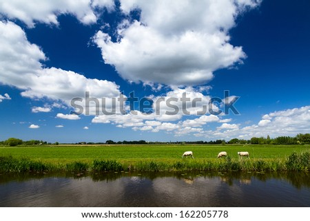 Typical dutch river landscape in spring at the river with a beautiful cloudscape in Baambrugge, the Netherlands. - stock photo