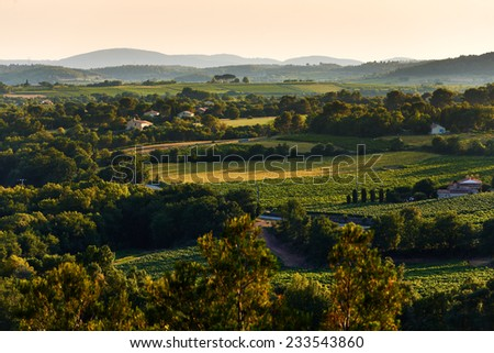 Typical French Provence rural landscape in summer at sunset - stock photo