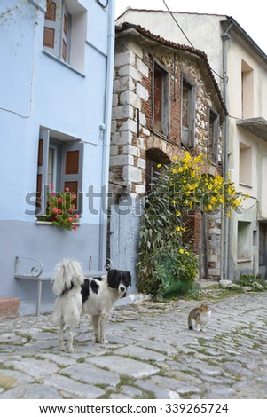 Typical Greek village with colorfull house