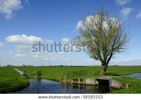 Typical Holland landscape in the summer - stock photo