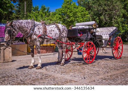 Typical horse-drawn carriage in Given Spain's Square, located in the Parque Maria Luisa,Seville, Andalucia, Spain - stock photo