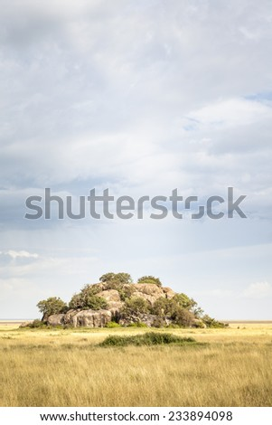 Typical landscape in the Serengeti National Park, Tanzania, East Africa - stock photo