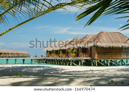 Typical Maldives resort water houses framed with palm tree  - stock photo
