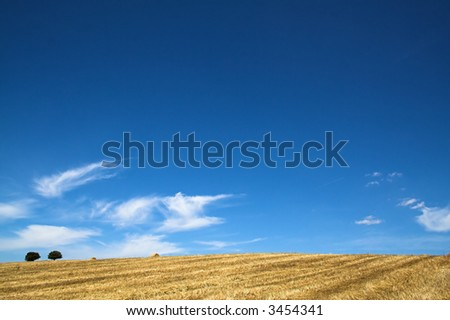 Typical Mediterranean landscape from Alentejo (Portugal), very similar to Tuscany (Italy) - stock photo