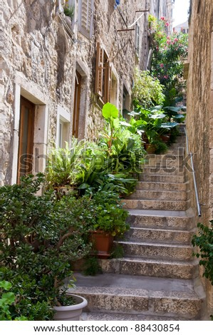 Typical mediterranean street with stone brick house and stone stairs and lush vegetation pots