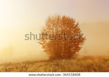 Typical mountain landscape of Bihar Mountains in Transylvania - stock photo