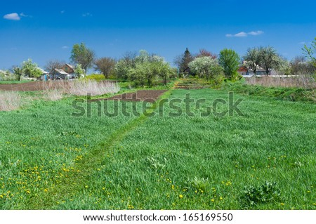 Typical rural landscape at spring season in central Ukraine. - stock photo
