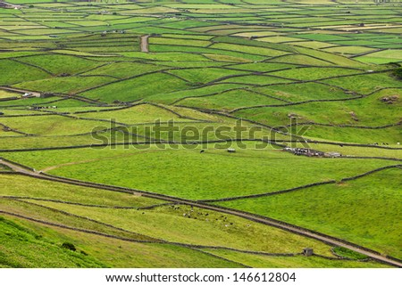 Typical rural landscape with lava stone walls on the island of Terceira, Azores - stock photo