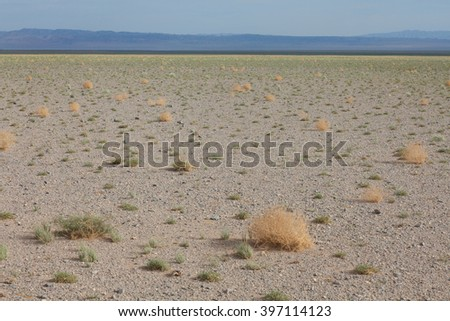 Typical steppe landscape in Mongolia