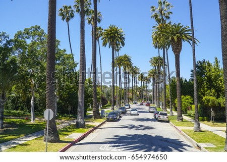 Typical street view in Beverly Hills - alley of Palm Trees - LOS ANGELES / CALIFORNIA - APRIL 20, 2017