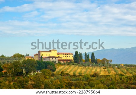 Typical Tuscan hill, with cypresses, olive trees and vineyards. - stock photo