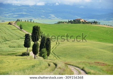 Typical Tuscan landscape. Italy - stock photo
