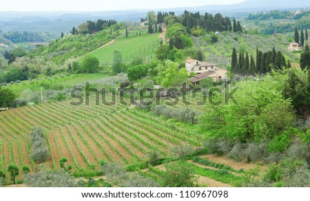 Typical Tuscan landscape with vineyards and farm houses