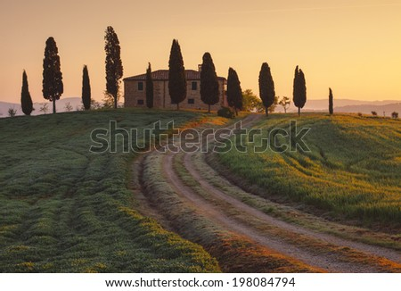 Typical Tuscan view from the villa and cypress trees at dawn. Tuscany, Italy - stock photo