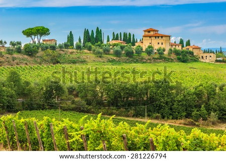 Typical Tuscany stone house with stunning vineyard in the Chianti region,Tuscany,Italy,Europe - stock photo