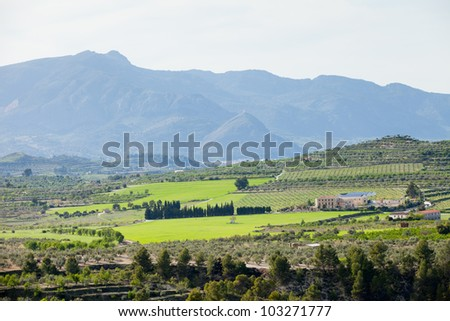 Typical View of South Eastern Spain - lots of Agriculture, Orange Plants, Mountains at Background