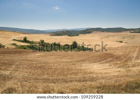 Typically Tuscan landscape in summer with dry farm fields and hills.