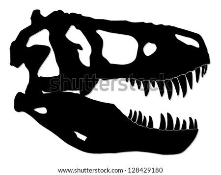 tyrannosaur skull/ dinosaur/ silhouette illustration - stock photo