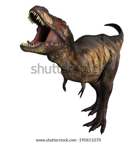 tyrannosaurus angry - stock photo