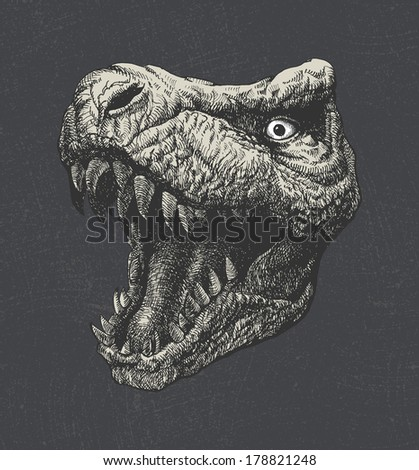 Tyrannosaurus Dinosaur . Hand drawn. Jpeg version. - stock photo