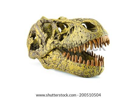 Tyrannosaurus fossil head model toy - stock photo