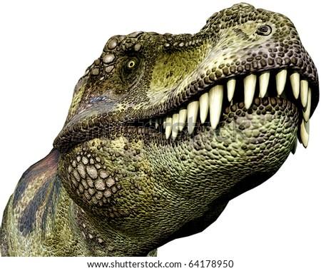 Tyrannosaurus green close up - stock photo