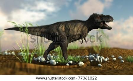 tyrannosaurus in savanna - stock photo
